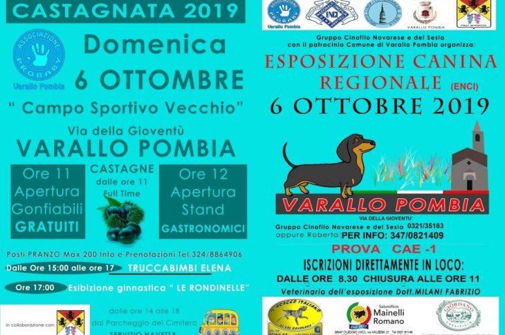 Varallo Pombia: esposizione canina regionale il 6 ottobre